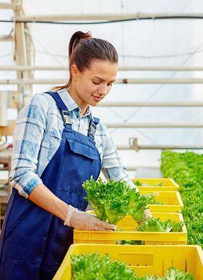Kümmern Sie sich um Ihre Pflanzen - erfahren Sie mehr über Container, Karren und andere landwirtschaftliche Lösungen