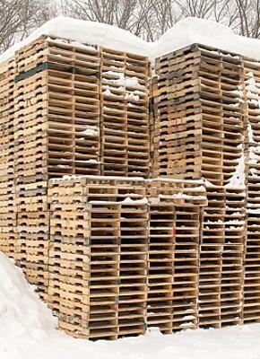 Wie kann man Schimmel auf Holzpaletten vermeiden? Entdecken Sie Möglichkeiten zum Schutz Ihrer Paletten